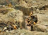 戦場に残した大量のう●こが致命傷に!? ガダルカナル島、悲劇の舞台裏