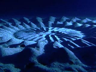フグが作ったミステリーサークルの謎=奄美大島