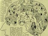 僕のぐちゃぐちゃになった頭蓋骨も証明した!? 19世紀ヨーロッパを風靡した「骨相学」の真実とは?