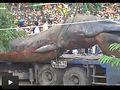 リアル・トレマーズ!! ベトナムの地底から謎の超巨大生物が発掘!!