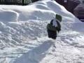 【動画】まるで雪上に舞い降りた緑の妖精!! 超絶可愛いはしゃぎっぷりなのだが…
