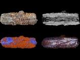 エジプト人は隕石から宝石を作っていた! 古代アクセサリー事情