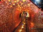 貝殻5,000万個分! ちょいグロスポット「蒲郡ファンタジー館」の幻想奇景