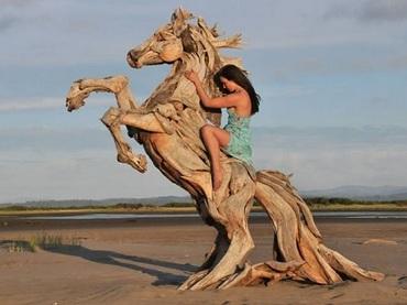 木片を組み合わせて命を吹き込む男! リアルで超個性的な流木アート!!