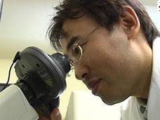【髪神の降臨】薄毛が復活する細胞再生物質「バイオポリリン」酸を開発した日本人博士の功績がすごい!