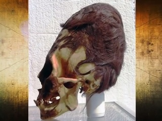 【エイリアンか、新種か、捏造か!? ペルーで発見された「パラカスの頭蓋骨」に刻まれた未知の遺伝情報とは?