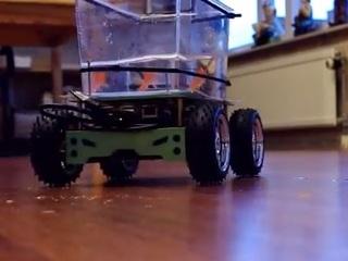 陸を移動する金魚!? 金魚自身が運転する画期的装置とは?