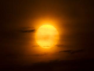 """""""太陽を食べて生きる"""" — サンゲイジングの魅力"""