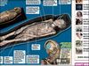 """【古代エジプト】最新スキャナでミイラを輪切り!!  セクシー歌姫の""""華麗なる人生""""が蘇る!"""