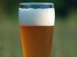 究極のビンテージビール!? なんと3,500万年前のクジラの化石でご当地ビール誕生!