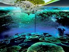 近未来ハイテク装備満載!? SF風の「人工サンゴ礁」計画が進行中!
