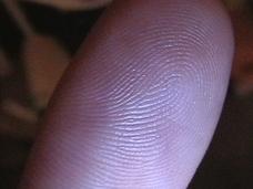 犯罪科学のエキスパートが告発!! 揺らぐ指紋鑑定の信頼性