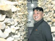 北朝鮮が超強力エナジードリンクを開発!! 身体能力の向上と疲労回復に効果抜群!?
