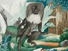 想像力だけで動物を描き続けた男 ― 死後評価の無名画家、アロイス・ツェトルの非現実的アート