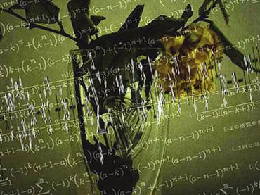 堅い頭を丸くしよう!東大生でも間違えた算数問題、あなたは解けますか?