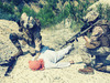【シリア拘束・湯川氏】自殺未遂、ホスト、男装… オカルティックな「もうひとつの人生」