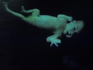 「ヘルプミー、オビワン!」 ホログラムによる映像メッセージが現実に?