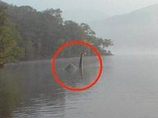 鮮明なネッシーの姿をついに激写!? ネス湖から移動か?