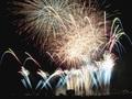 多摩川花火大会をUFOも鑑賞しに来ていた!? 目撃者が衝撃の瞬間を語る
