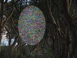 薄暗い並木道に現れた幽霊「グレイ・レディ」!! 恐ろしくも美しい心霊写真