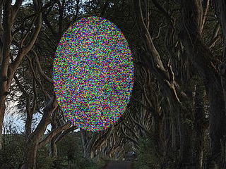 【薄暗い並木道に現れた幽霊「グレイ・レディ」!! 恐ろしくも美しい心霊写真