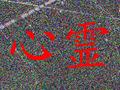 【心霊写真】空中を漂う無数のオーブ!! 東北の自殺スポットでとらえた「死者のメッセージ」とは?
