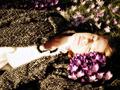 """""""眠り姫""""という病 ― 1日22時間眠る女性、夢と現実の区別つかず"""