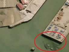 その名も「クラブジラ」! イギリスで超巨大ゴジラ級のカニが出現か?