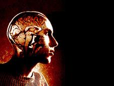 脳コミュニケーションの時代到来か? ― 驚異の科学的読心術、心の先読みも
