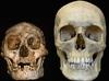 ホビット? ダウン症? 身長1m、高度な知能を持った1万7千年前の人骨の謎!