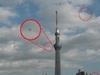 【スクープ!?】浅草にUFOの召喚成功か!? 「UFOを呼べるおじさん」が伝授する、UFOの撮影方法も!