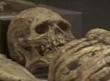 【動画】人に酷似した新種の巨大生物の骨が英で発見か?