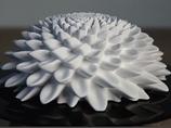 【数式を可視化】フィボナッチ数列の美しさがわかる幻想的な映像!