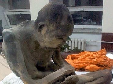永遠に瞑想する仏教僧のミイラが発見される!=モンゴル
