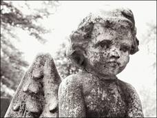 """空から""""白い殺人糸""""が降ってくる!? 作家・新田次郎が遭遇した、恐怖の「エンゼル・ヘアー殺人事件」"""