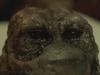 ネットで話題の怖くてキモいショートフィルム『The Grey Matter~大脳灰白質~』