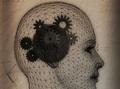 失われた記憶を取り戻すことができる?「長期記憶の保存先はシナプスではなかった」=米研究