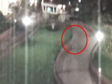 【心霊動画】深夜のディズニーランドを徘徊する不思議な人影!! ウォルト・ディズニーか!?