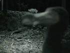 【動画】絶滅したはずの「ドードー鳥」が生きていた!? 350年ぶりに捉えられた衝撃の姿!!
