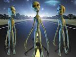 「グレイは非常に前向きな性格」秋山眞人インタビュー! 地球に来ている宇宙人について語る!