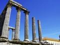 未来のインディ・ジョーンズになるために…! 「古代遺跡を新発見する方法5つ」をジャーナリストが説く!
