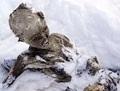 苦悶の表情? 半世紀前に雪山で遭難した登山者のミイラが2体発見される=メキシコ