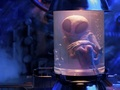 米国は宇宙人と地球人12人を交換留学させていた!? 謎の計画「プロジェクト・セルポ」とは?