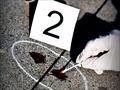 【日本怪事件】人間の魔性が現れる ― むごすぎる保険金殺人3選!! ノンフィクションライターが選出