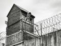 ブチ込まれたら、みんな自殺したくなる? 経験者に聞いた、刑事施設のリアル自殺事情!