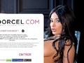 世界の広告業界が驚嘆! 欧州ポルノの帝王が編み出した「有料加入者50倍のネット集客法」が素晴らしすぎる!