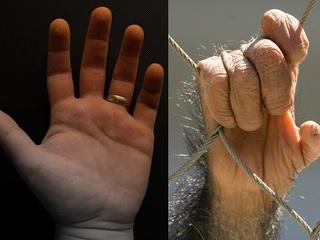 【衝撃】人間の手は、チンパンジーの手よりも原始的で未発達だった!!(最新研究)