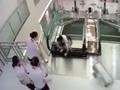【閲覧注意】エスカレーターの床、崩落!! 息子を助け死亡した母親の勇姿=中国