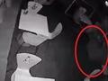 【動画】武装警官はつぶやいた「泥棒ではない。これは幽霊だ」=イギリス