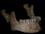 アレクサンドロス大王の父親、フィリッポス2世の遺骨発見!! 史実を覆す発見か!?=ギリシャ